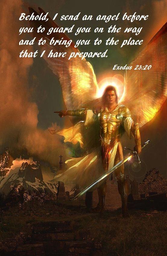 """""""Vou enviar um anjo adiante de ti para te proteger no caminho e para te conduzir ao lugar que te preparei. Êxodo 23:20"""